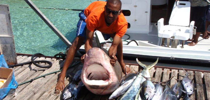 Deep Sea Fishing at Black River- 40ft Boat- Full Day