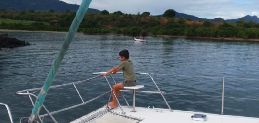 Catamaran West Coast – Dolphins Cruise