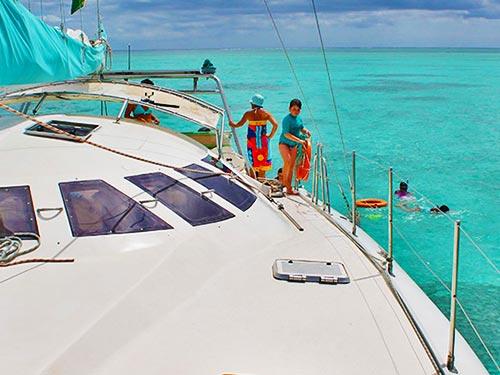 Catamaran West Coast – Dolphins Cruise