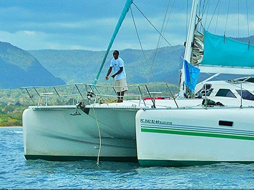 Private Catamaran Dolphins Cruise – West Coast