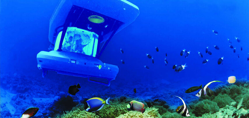 Private Submarine Underwater Trip