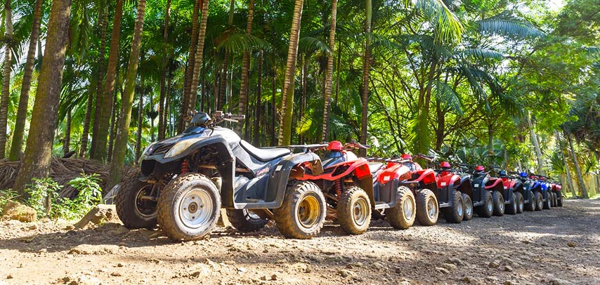Big Foot Adventure – 2-hour Quad Biking In The South