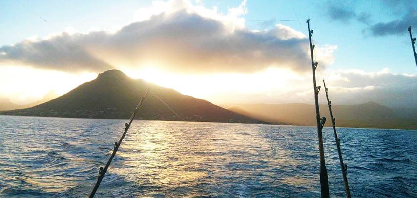 Deep Sea Fishing at Black River- 40ft Boat- Half Day