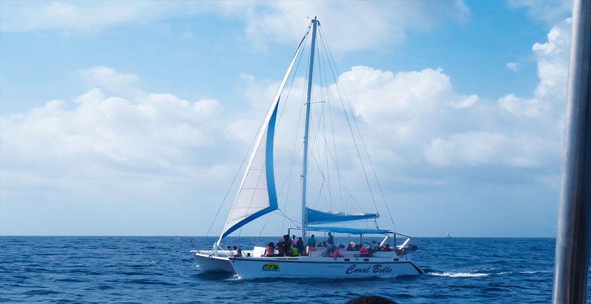 Full Day Catamaran Cruise to Gabriel Island (Private or Shared Basis)