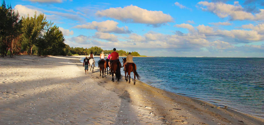 Amazing Horse Riding On The Riambel Beach