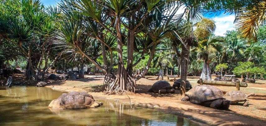 Crocodile & Giant Tortoises Park and Nature Reserve