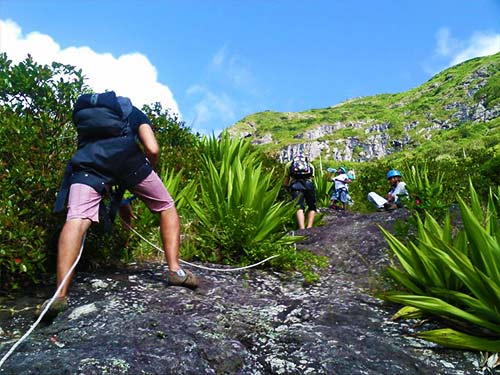 Half Day Hiking Trip at Le Pouce Mountain or Ile d'Ambre