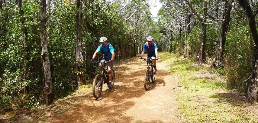Mountain Biking Trails (North-East)