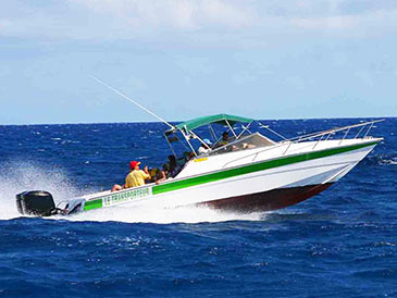 Northern Islands Private Speed Boat Trip