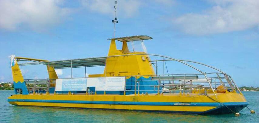 Semi Submarine Trip on The Nessee