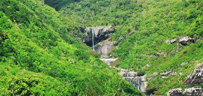 Tamarind Falls Hiking Trip – Half Day