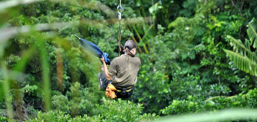 Zip Line Package + Optional Lunch at Chazal