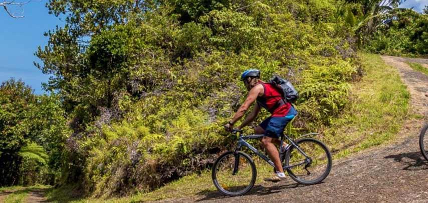 Visit + Hike + Optional Kayak at Domaine De L'Etoile Reserve