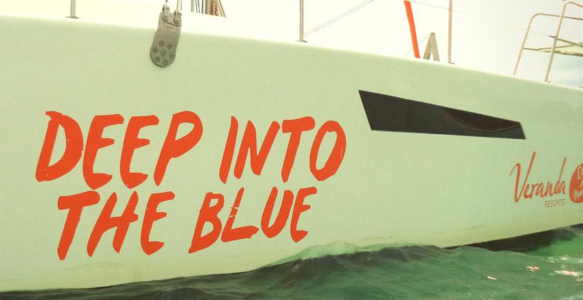 Catamaran Full Day Cruise To Bernaches Island & Ile d'Ambre