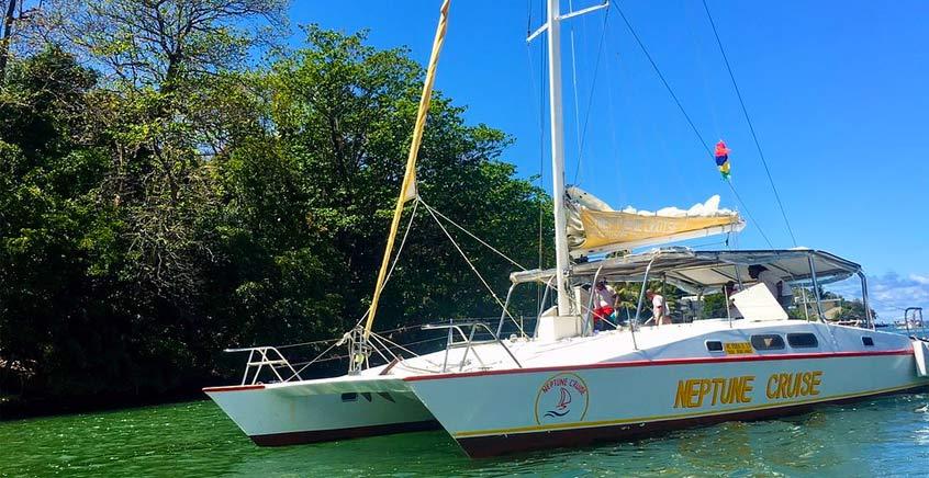 All Inclusive Catamaran Cruise to Ile Aux Cerfs Island