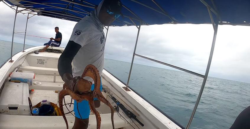 Small Game Fishing Trip (East Coast)